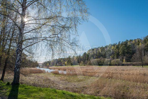Vår i Sverige