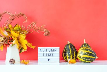 Box with text AUTUMN TIME, decorative striped pumpkins,...