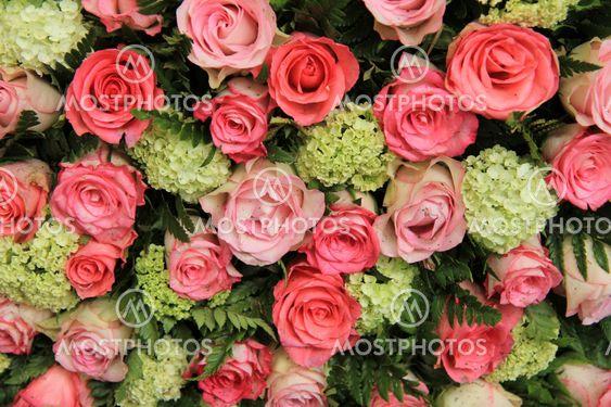 Bridal arrangement, pink roses and hydrangea