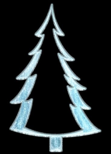Fir covered with snow