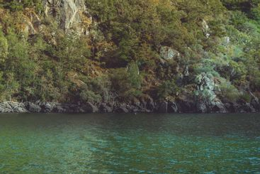 agua turquesa de la isla tropical vista desde el agua