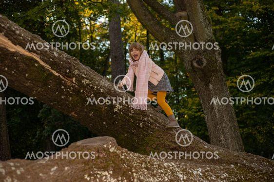 girl kid climbs huge trees in the autumn Park. Fun...