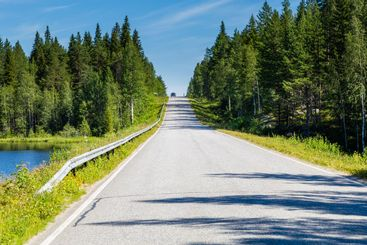 Countryroad tree landscape in Finland