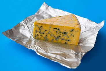 Piece of moldy cheese on a blue background