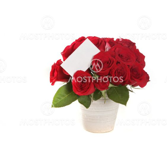 Beautiful Bouquet of Roses With Blank Message Sign on White