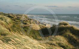 Dig 07-527-15 strand bunker Lökken Danmark 2007-07-15 RS