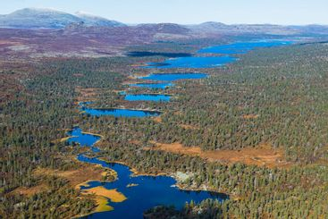 Aerial view of forests and lakes, Hävlingen, Dalarna,...
