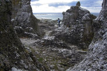 Rocky Beaches of the North of the Island