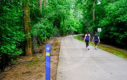 Walkers on Concrete Fitness Trail