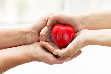 senior and young woman hands holding red heart