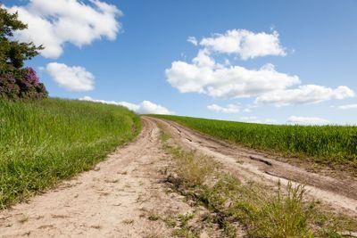 Dirt Road on a Farm