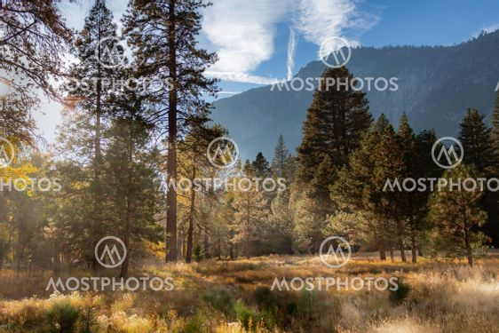Scenic fall colors in Yosemite Valley with a meadow and...