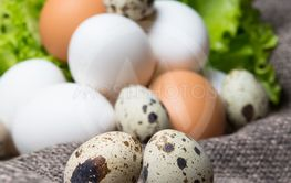 spotted a couple quail eggs