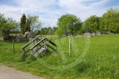 Swedish Pasture