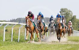 Side front view of colorful jockeys riding arabian race...