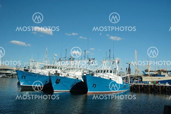 Ships At Harbor