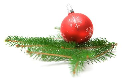 Christmas Bauble on Fir Branch