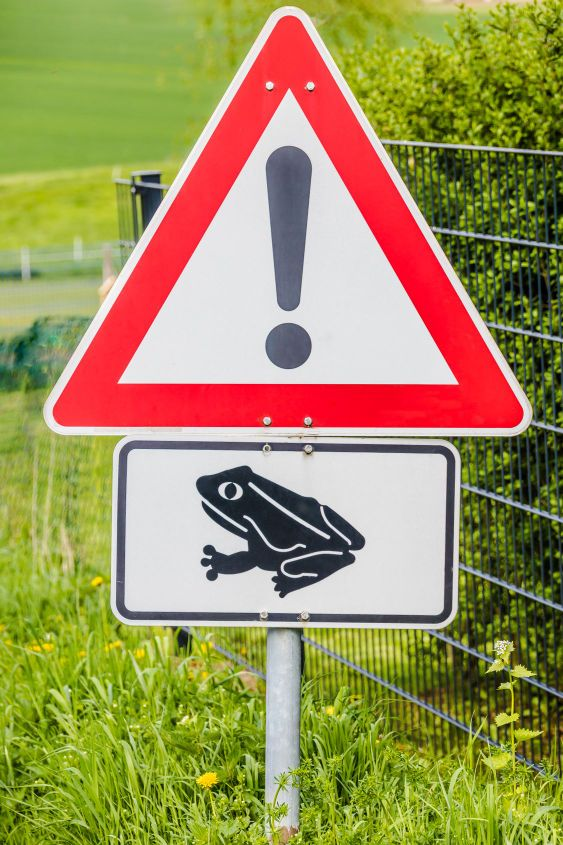 Toad hike sign