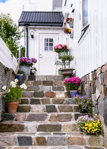 Colorful flowers on staircase