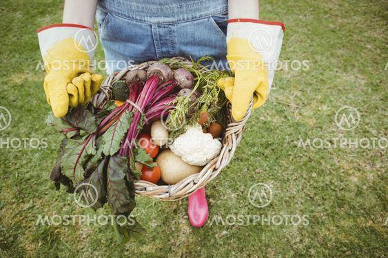 Woman holding a basket of freshly harvested vegetables