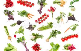 various ripe vegetables with greens isolated