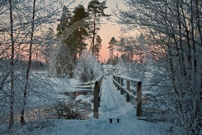 Träbron