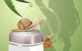 cream based on snail slime