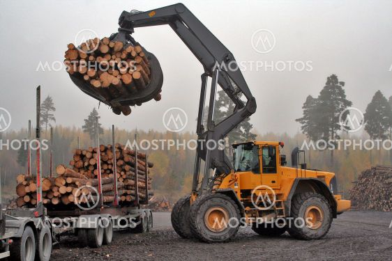 Unloading the log truck