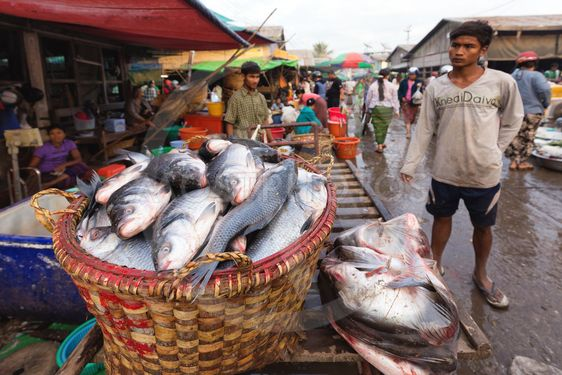 Fish seller in Myanmar