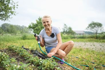 Mature elderly woman watering plants with water hose....