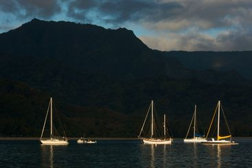 Sailboats in the Early Morning Light