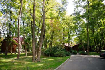 a path between houses and trees outside the city