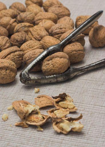 Walnuts and nutcrackers