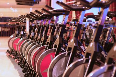 Rows of bikes