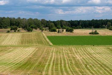 Farmland with symmetric fields