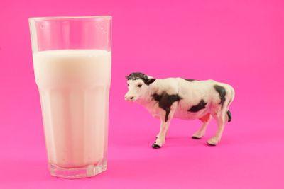 Glass of milk cow toy