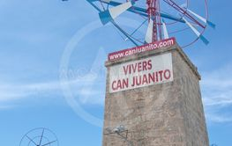 Windmill Vivers Can Juanito plant nursery