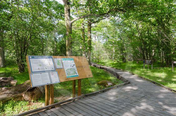 Informationstavla i Halltorps Hages naturreservat på Öland
