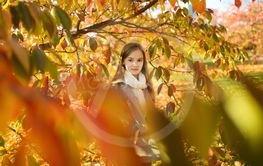 Adorable young girl having fun on beautiful autumn day....