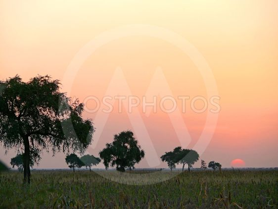 Southwest Sudan. Sunset. Landscape nature.