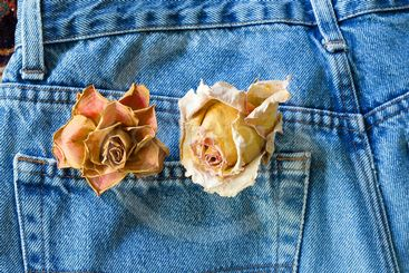 jean and roses