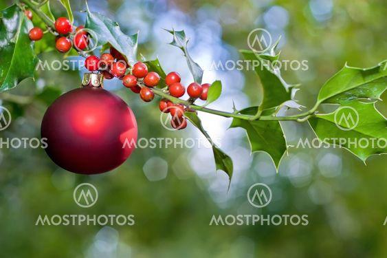 Christmas ball och holly