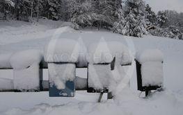 Brevlådor i snö