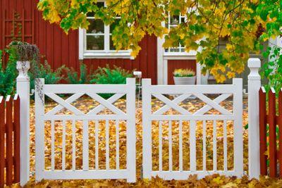 Trädgård med höstfärger