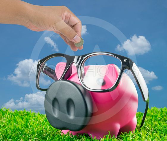 Piggy bank with glasses sitting on grass