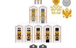 Insignia of students of the Imperial Military Medical...