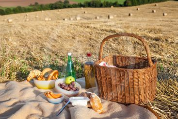 Picnic basket and different food and drinks on straw field