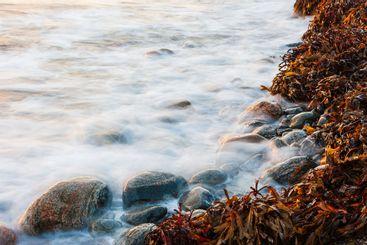 Waves crashing on beach, Sweden.