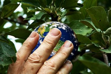Picking the earth