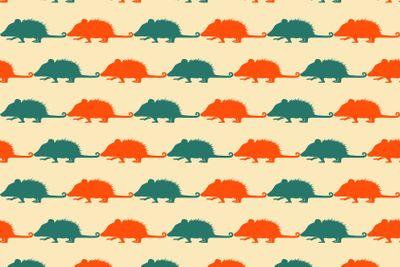 Opossum pattern.